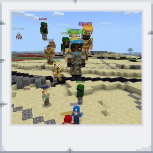 Minecraft EE-projektet med skolorna